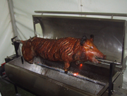 Hog roasting on a spit